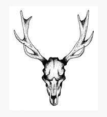 Deer dots tattoo  Photographic Print