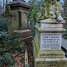 Sleeping Lion in Abney Park, Winter by opheliaautumn
