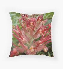 A Red Grevillea Flower in Bloom Throw Pillow