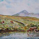 Croagh patrick viewed from Owenwee. by Joe Trodden