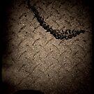Discarded twig by fourthangel