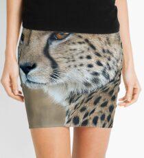 Regal Beauty Mini Skirt