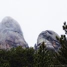 Land of the Spirits (Black Hills, South Dakota) by rocamiadesign