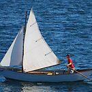 Tom's Sail Dory  by Steve Borichevsky