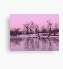 Rosy Gray Reflections Canvas Print
