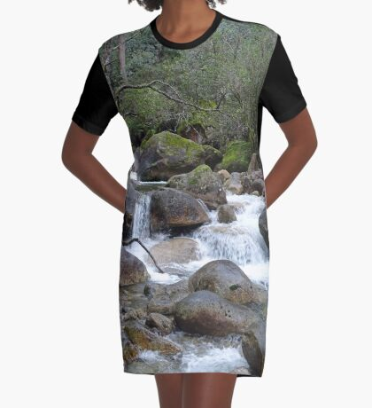Stream and falls Graphic T-Shirt Dress