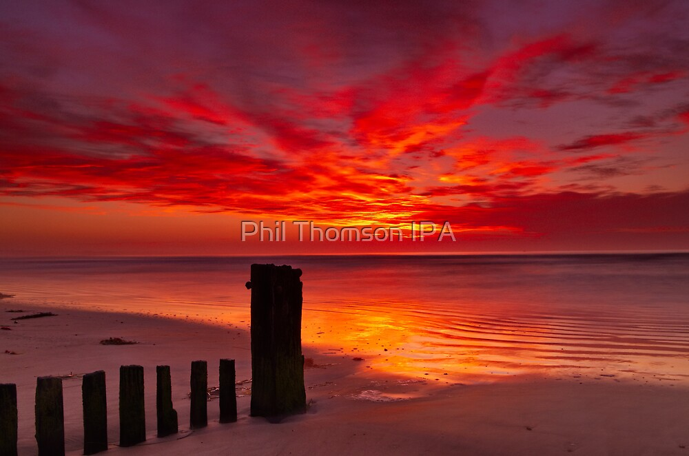 """""""Tongues of Fire"""" by Phil Thomson IPA"""