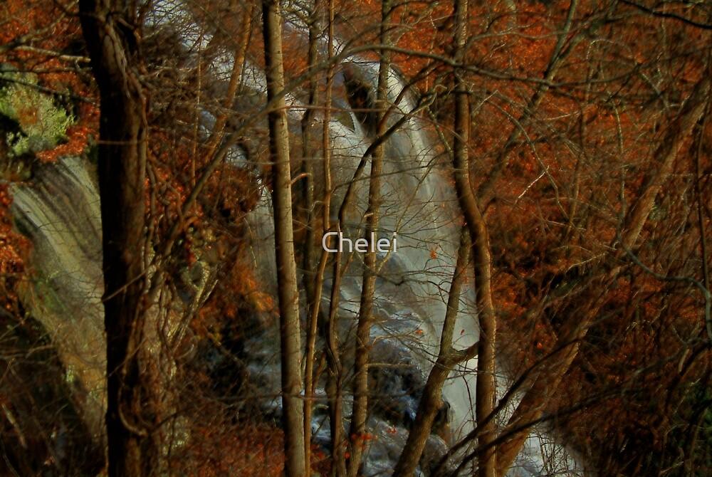 Amicalola Falls, Dawsonville, Georgia by Chelei