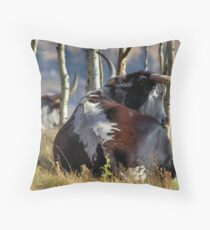 Alberta Longhorn2 Throw Pillow