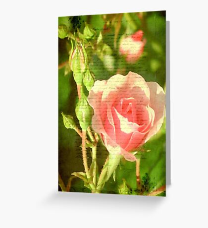 Beauty © Greeting Card