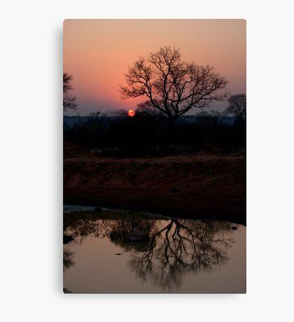 Lion Sands Sunset Canvas Print