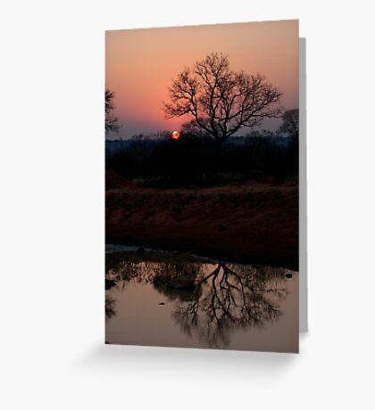 Lion Sands Sunset Greeting Card