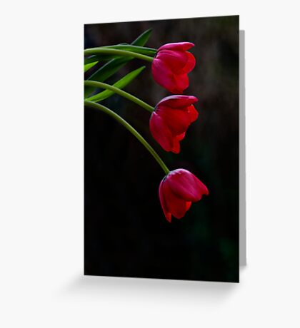 Just Hanging Greeting Card