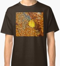Premature Autumn Aspen Leaf Classic T-Shirt