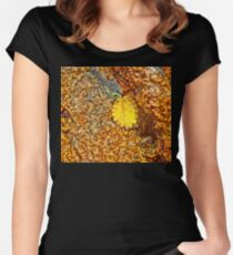 Premature Autumn Aspen Leaf Women's Fitted Scoop T-Shirt