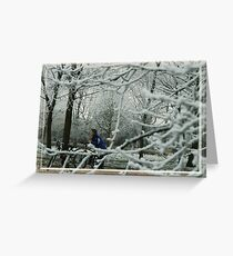 thoughts in sheer frost Greeting Card