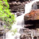 ~ Somersby Falls ~ by Donna Keevers Driver