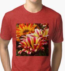 Gazania Tri-blend T-Shirt