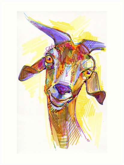 Goat drawing - 2011 by Gwenn Seemel