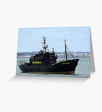 Sea Sheperd Greeting Card