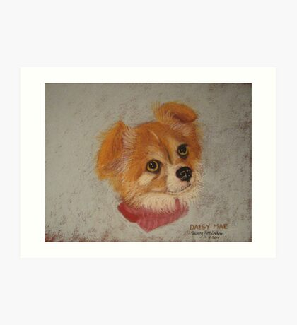 Daisy Mae - long-haired Chihuahua Art Print