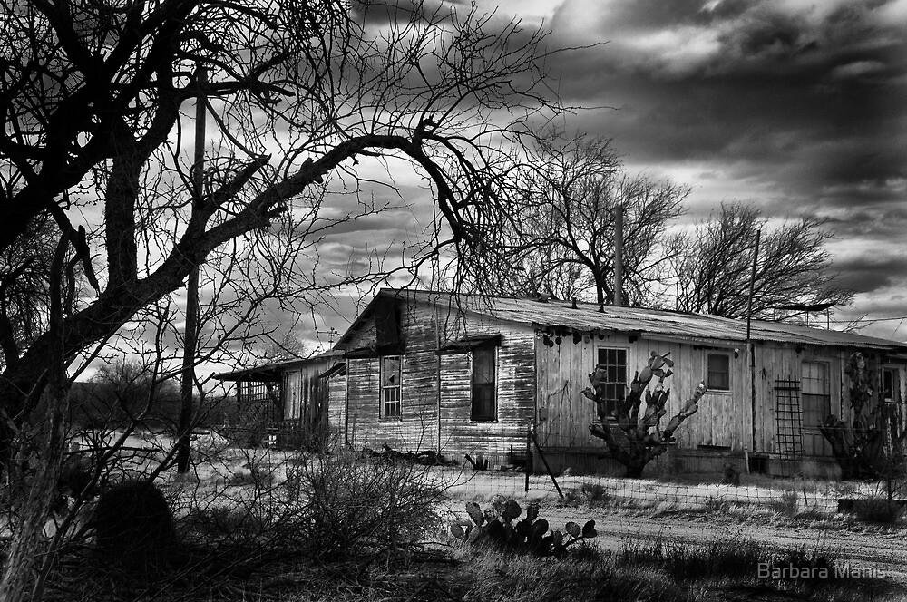 Alice Doesn't Live Here Anymore by Barbara Manis