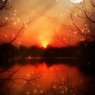 Magical Eve-McCarty Park © by Dawn Becker