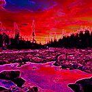 MOUNTAIN LAKE by Michael Todd