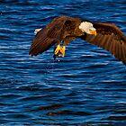 Gone Fishing by John Absher
