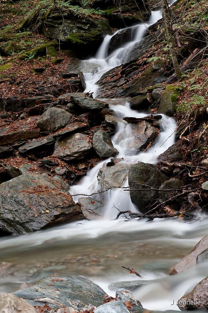Hillside Stream Rushing Down the Mountain by Joe Jennelle