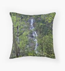 Waters in the Forest Throw Pillow