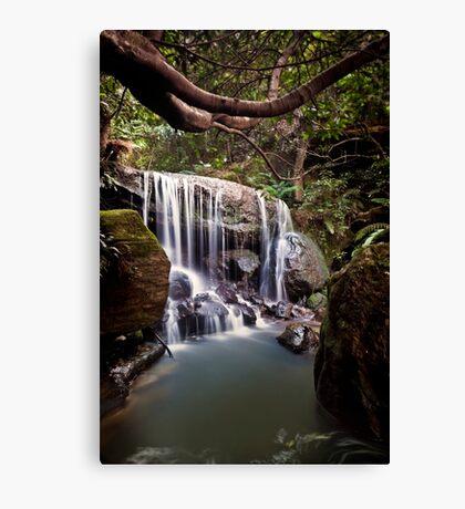~ chasing waterfalls ~ Canvas Print
