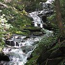 Waterfalls - North Carolina by glennc70000