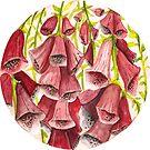 Watercolor Flowers in a circle - foxgloves by Magdalena Żołnierowicz