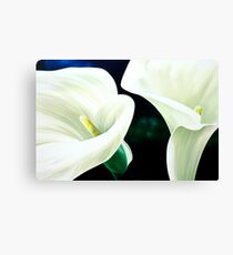 """""""Mercy and Majesty"""" - huge painting of calla lilies Canvas Print"""