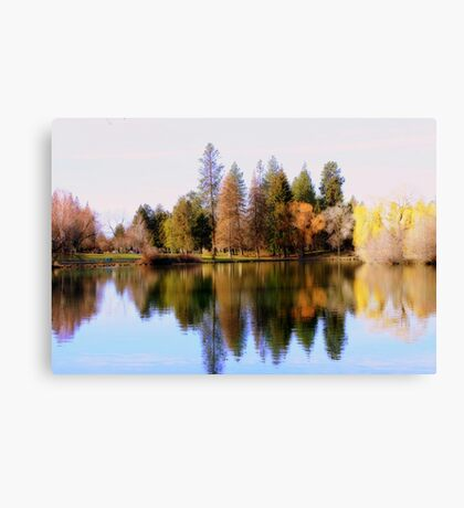 Tree Reflections #2 Canvas Print