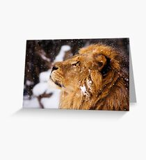 What is that white stuff coming from the sky?!! Greeting Card