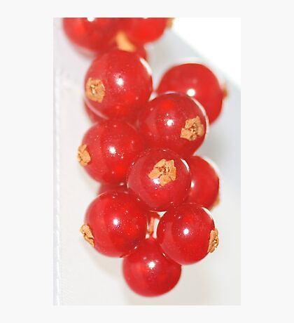 Red Currants Photographic Print