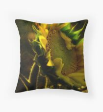 Sunshine for Anne Gitto Throw Pillow
