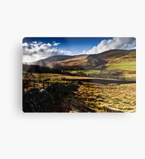 The Cheviot, Northumberland National Park. UK Metal Print