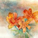 Tangerine Skies by Blended
