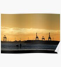 industrial savannah Poster