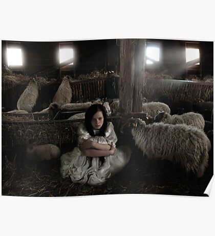 All sheep Poster