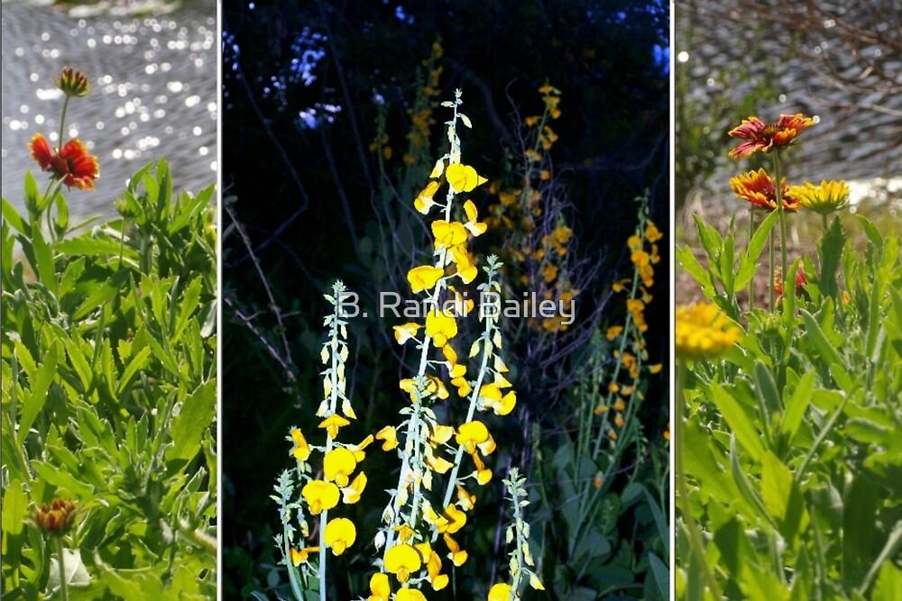 Wildflower collage by ♥⊱ B. Randi Bailey
