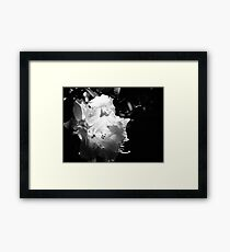 In the shadows #1 Framed Print