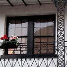 Fancy Window, Bourbon St., New Orleans by Debbie Robbins