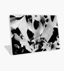 Succulent in black and white Laptop Skin