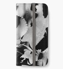 Succulent in black and white iPhone Wallet/Case/Skin