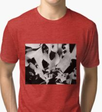 Succulent in black and white Tri-blend T-Shirt