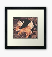 Kitty Cat Cuddle Framed Print